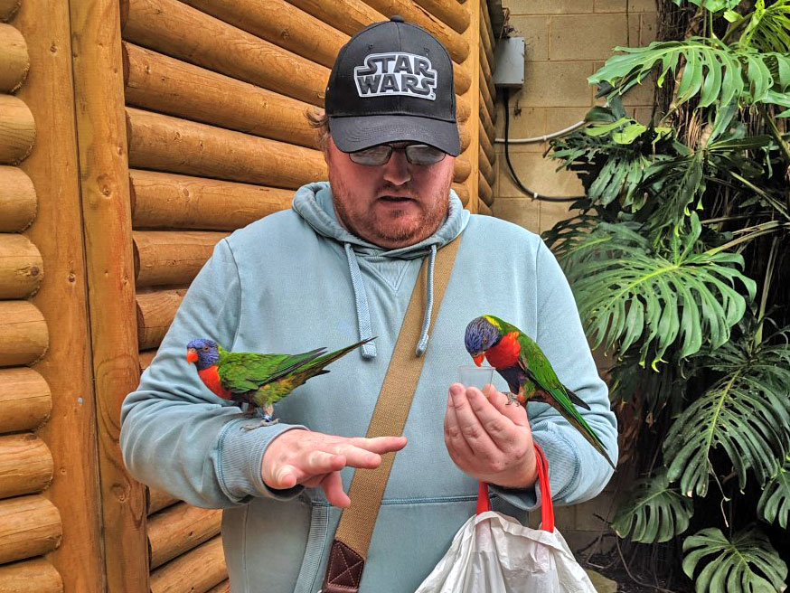 A man holding two colourful exotic birds
